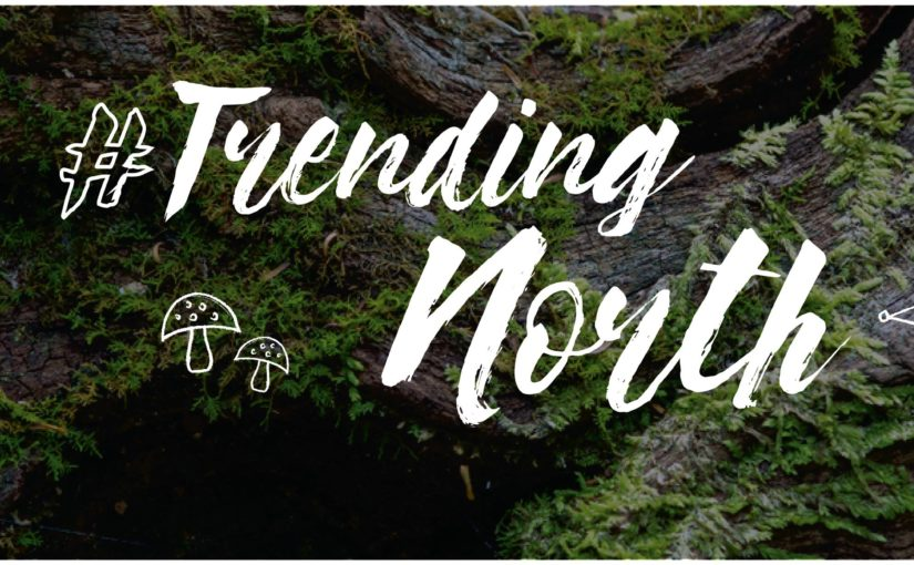 Learnings from #TrendingNorth – January Event by Ad Fed MN