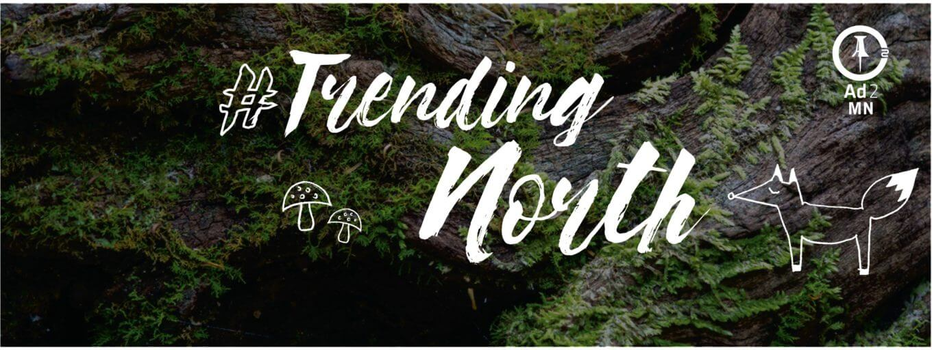 trending-north-event